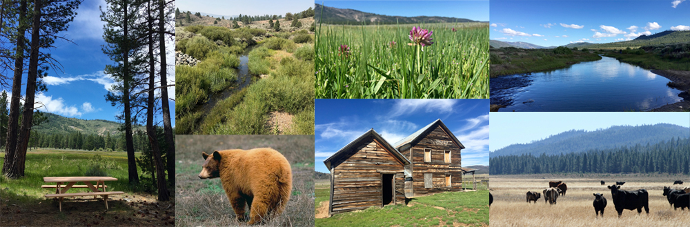Clover Valley Ranch collage